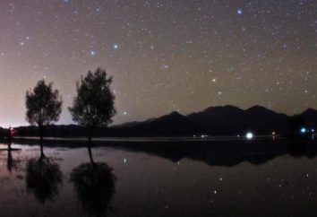 Orsa Maggiore e Orsa Minore nel cielo: una lista di stelle, come trovare, leggende e le descrizioni