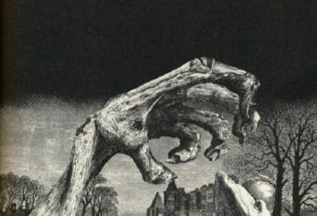 """Edgar Allan Poe """"Zagłada domu Usherów"""": podsumowanie"""