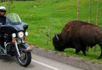Tourer. Les caractéristiques des motos. Top motos touristiques