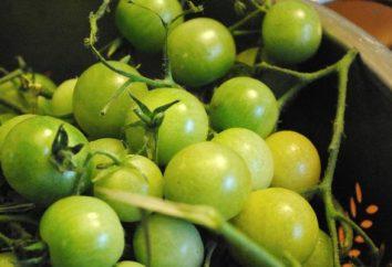 los tomates verdes bajo una cubierta de nylon – recetas de cocina