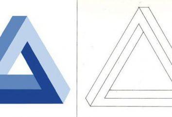 Co trzeba wiedzieć o Penrose trójkąta?