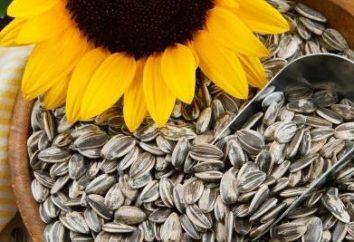 Come friggere i semi in una padella a casa