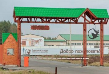 """Village Kadnikovo, """"White Horse"""" (clube equestre, centro recreativo). Como chegar lá?"""