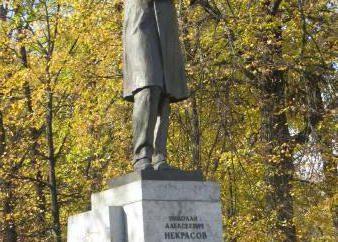 Le thème de la poésie et le poète dans le Nekrasov lyrique. L'originalité des paroles Nekrasov
