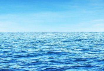 Perché sognare l'oceano? Il significato e l'interpretazione del sogno