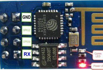 Mikrokontroler ESP8266: podłączenie i konfiguracja
