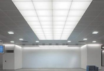 ¿Cómo elegir una luz fluorescente del techo? Accesorios de luz industrial y para la oficina o el hogar