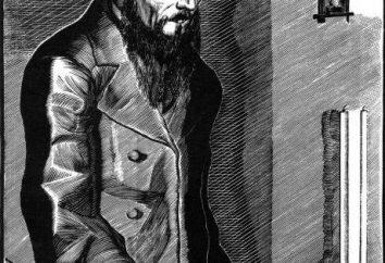 """""""Delitto e castigo"""": recensioni. """"Delitto e castigo"""" di Fodora Mihaylovicha Dostoevskogo: una sintesi dei personaggi principali"""