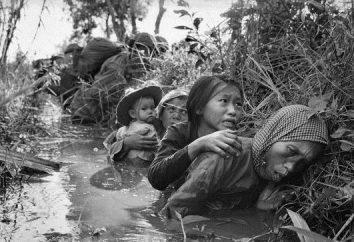 perda dos EUA no Vietnã por ano