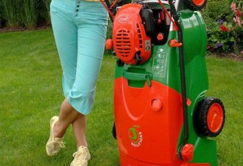 Rasenmäher, selbstfahr: wie soll man wählen? Wie ein Rasenmäher für den Garten wählen