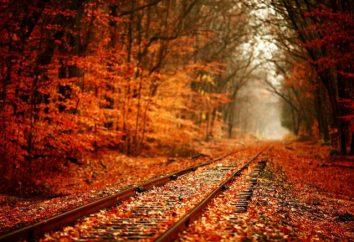 Descrição do outono no estilo artístico: como escrever um ensaio?