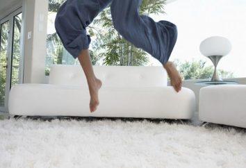Conseils: Comment nettoyer le tapis à la maison