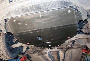 """Ford Focus 2"": Schutz des Motorkurbelgehäuse"