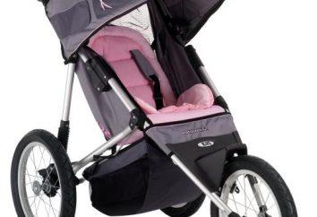 Baby Care Città Stile – l'opzione migliore per i viaggi!