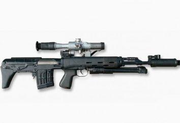 IEDs (Gewehr): Beschreibung, Preis. Sniper Rifle IEDs