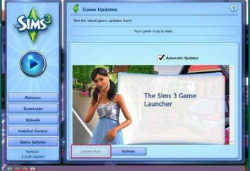 """Come impostare le modalità sui """"The Sims 3"""" – le istruzioni complete"""