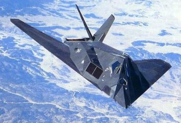 "technologie « furtif ». L'avion F-117A, C-37 ""Golden Eagle"" et d'autres"