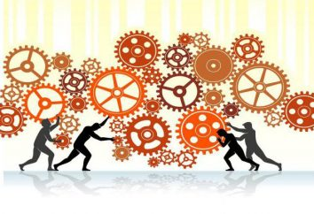 Steuerobjekt, das Thema Management – ergänzende Konzepte