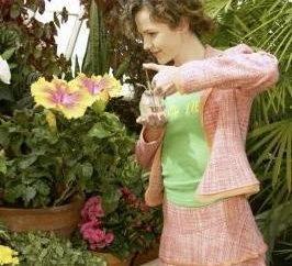 Hibiscus, ou China subiu: cuidados em casa