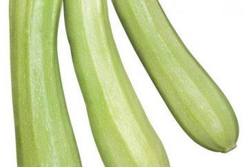 """Zucchini """"Kavili"""": caratteristiche e varietà recensioni"""