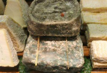 fromage Rotten: un délice pour les gourmets intrépides