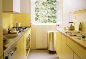 Petite cuisine – comment organiser l'espace correctement