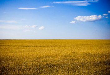 Akademia Rolnicza w Symferopolu – idealny wybór dla uczestnika