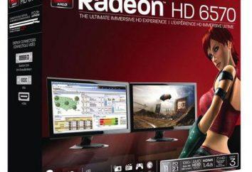 AMD Radeon HD 6570: przegląd karty graficznej