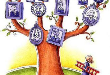 Jak zrobić drzewo genealogiczne. Krok po kroku