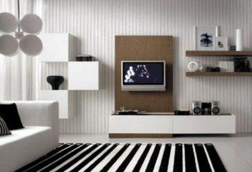 sala in bianco e nero. L'idea del progetto originale