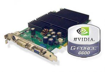 Karta graficzna GeForce 6600: podkręcanie, wydajność, testy i recenzje