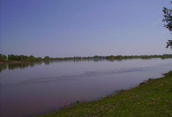 O rio Chulym – afluentes e fontes