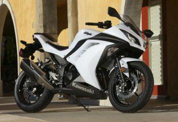 Kawasaki Ninja 300 – el primer lugar entre los deportes