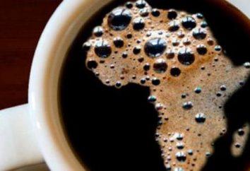 Kalorii cappuccino z cukru i cukrów