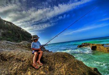 Che cosa è buona pesca in Montenegro?