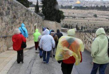 Soll ich nach Israel im Februar: Fotos und Bewertungen