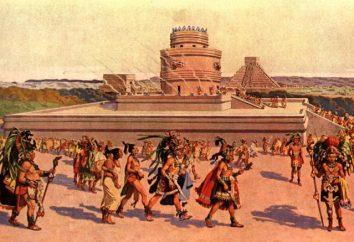 Skąd Maya: Tajemnice zaginionych cywilizacji. Powstanie i działalność dawnych mieszkańców Mezoameryki