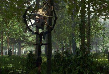 La Foresta: gioco recensione