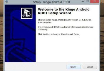 Kingo RAÍZ: cómo utilizar el programa para obtener derechos de administrador en Android