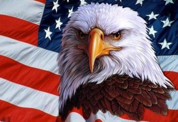 Jak przejść do Ameryki albo jak zostać obywatelem USA
