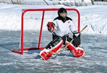 Quanti periodi a hockey su ghiaccio