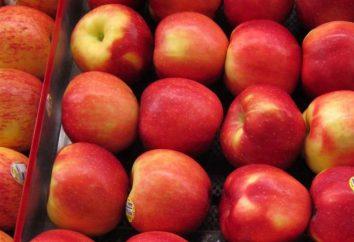 Apple Tree Fraîcheur: description, photos, commentaires, caractéristiques de la culture et de soins