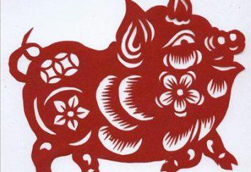 1983 – l'anno della animale sul calendario orientale? Caratteristiche e compatibilità
