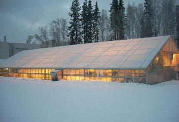 Beheizten Gewächshäusern mit ihren eigenen Händen. Wie ein Gewächshaus ohne Gas und Strom im Winter zu heizen?