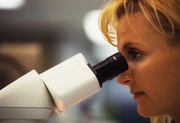 Patologia – che … Cosa è necessario sapere?