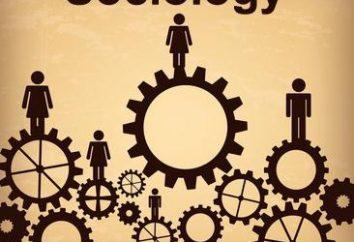 jour Sociologue: quand et comment célébrer apparu