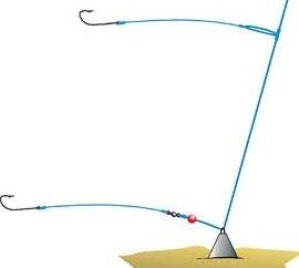 trofeos de pesca o Donka carp