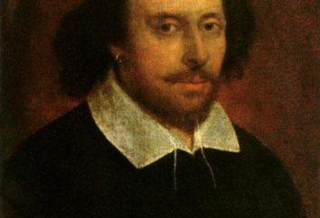 """""""Dodicesima notte"""": una breve sintesi. """"Dodicesima notte"""", Shakespeare: genere, personaggi principali"""