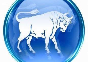 Zgodność samic Taurus i samca Strzelec: krótki opis