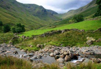 UK: przyroda, klimat. Flora i fauna Wielkiej Brytanii